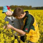 Sectorul agricol si IMM-urile primesc noi finantari de 15 mil de euro