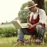 SUBVENȚII: Solicitările pentru exploatațiile agricole sunt terminate!